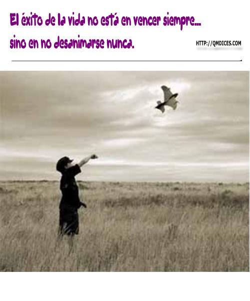 El éxito de la vida no está en vencer siempre...
