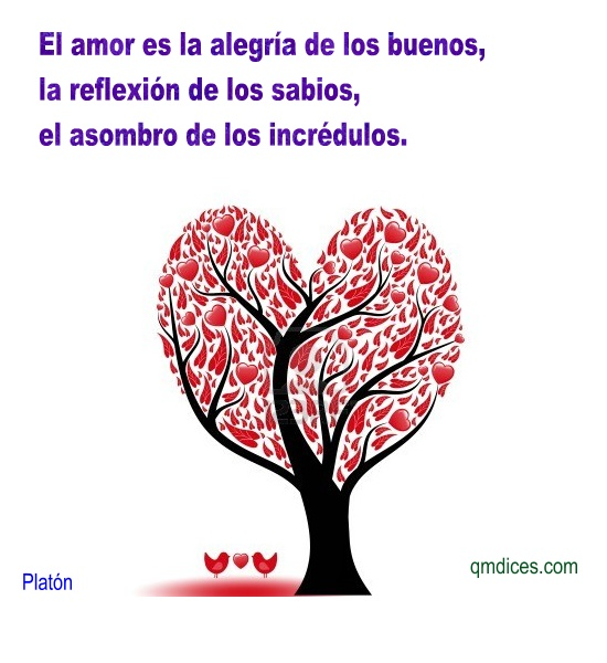 El amor es la alegría de los buenos