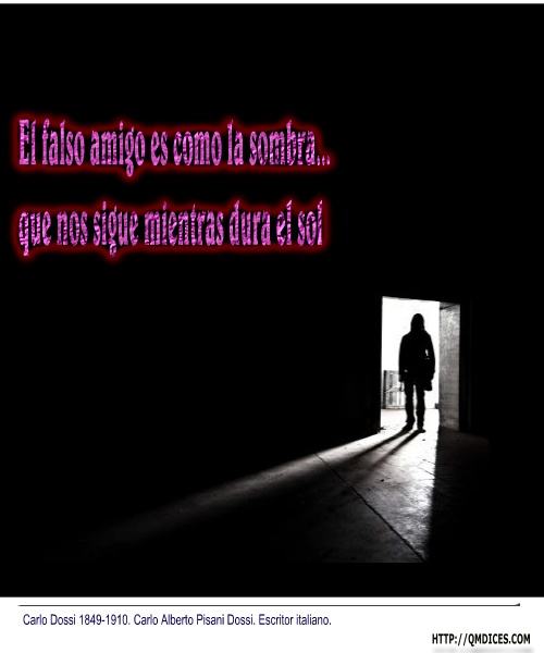 El falso amigo es como la sombra...