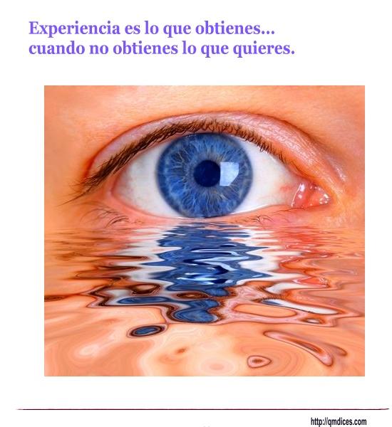 Experiencia es lo que obtienes...