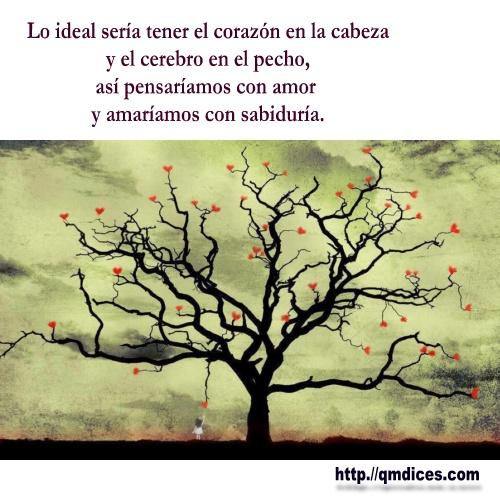 Frases de Amor - Lo ideal sería tener el corazón en la cabeza...