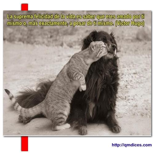 La suprema felicidad de la vida es saber que...