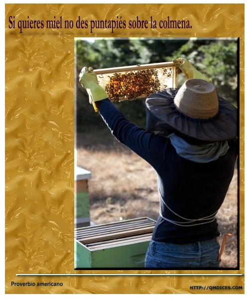 Si quieres miel ...